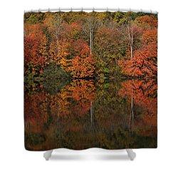 Autumns Design Shower Curtain by Karol Livote