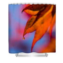 Autumn's Finest Shower Curtain by Anne Gilbert