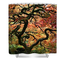 Autumn's Fire Shower Curtain