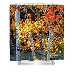 Autumn's Fire Shower Curtain by Jim Garrison