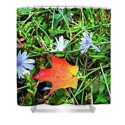 Shower Curtain featuring the photograph Autumns First Leaf by Jackie Carpenter