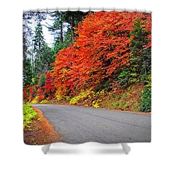 Shower Curtain featuring the photograph Autumn's Glory by Lynn Bauer
