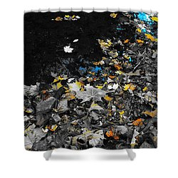 Shower Curtain featuring the photograph Autumn's Last Color by Photographic Arts And Design Studio