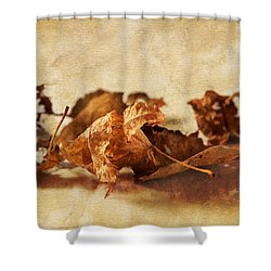 Autumn's Leavings Shower Curtain by Caitlyn  Grasso