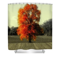 Autumn's Living Tree Shower Curtain