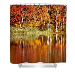 Autumns True Colors Shower Curtain by Karol Livote