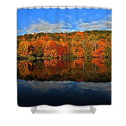 Autumnscape Shower Curtain by Karol Livote