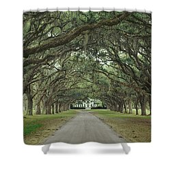 147706-avenue Of The Oaks  Shower Curtain