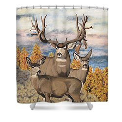 Avery Buck Shower Curtain
