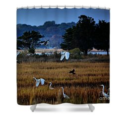Aviary Convention Shower Curtain