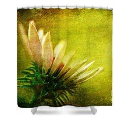 Awakening Shower Curtain by Lois Bryan