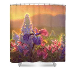 Awakening - Mt Susitna Spring - Sleeping Lady Shower Curtain