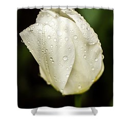 Awakening Shower Curtain by Sara Frank