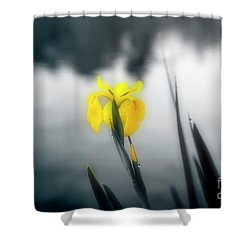 Awakening Shower Curtain by Scott Pellegrin