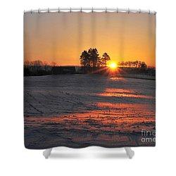 Shower Curtain featuring the photograph Awakening by Terri Gostola