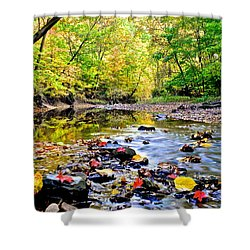 Awesome Autumn  Shower Curtain by Frozen in Time Fine Art Photography