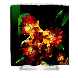 Awesome Iris Shower Curtain
