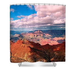 Awesome View Shower Curtain by Kathleen Struckle