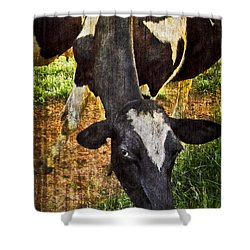 Awww Shucks Shower Curtain by Debra and Dave Vanderlaan