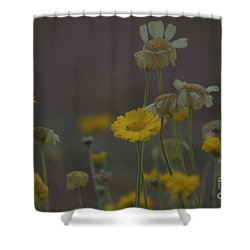 Shower Curtain featuring the photograph Az Flowers by Rod Wiens