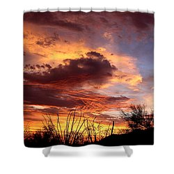 Az Monsoon Sunset Shower Curtain by Elaine Malott
