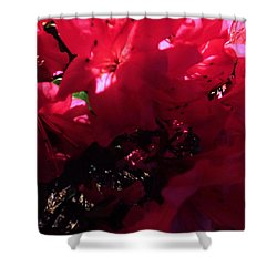 Shower Curtain featuring the photograph Azalea Abstract by Robyn King