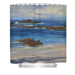 Azure Shower Curtain by Valerie Travers