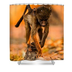 Baby Balance Shower Curtain by Alistair Lyne