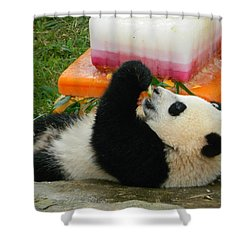 Baby Bao Bao's First Birthday Shower Curtain by Emmy Marie Vickers