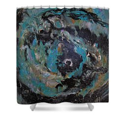 Baby Black Hole Shower Curtain by Susan Sadoury