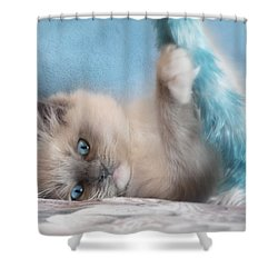 Baby Blues Shower Curtain by Lori Deiter