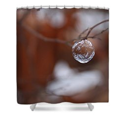 Baby Bubble Ornament Shower Curtain by Cathie Douglas
