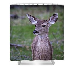 Baby Deer Shower Curtain