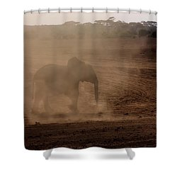 Shower Curtain featuring the photograph Baby Elephant  by Amanda Stadther
