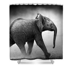 Baby Elephant Running Shower Curtain