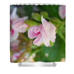 Shower Curtain featuring the photograph Baby Geranium by Ramona Matei