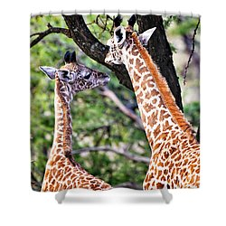 Baby Giraffes Shower Curtain