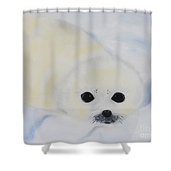 Baby Harp Seal Shower Curtain by Bev Conover