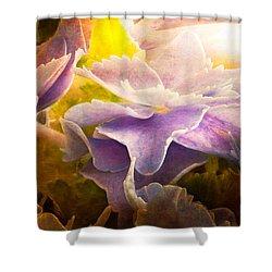 Baby Hydrangeas Shower Curtain by Bob Orsillo