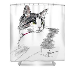 Baby Kitten Shower Curtain