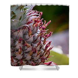 Baby White Pineapple Shower Curtain by Denise Bird
