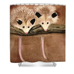 Baby Possums Shower Curtain