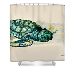 Da150 Baby Sea Turtle By Daniel Adams  Shower Curtain