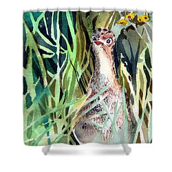 Baby Wild Turkey Shower Curtain
