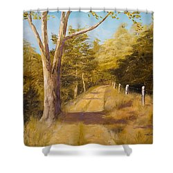 Back Road Shower Curtain by Alan Lakin
