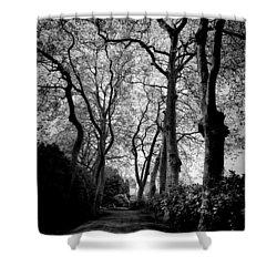 Back Road West Shower Curtain