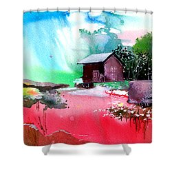 Back To Pavilion Shower Curtain by Anil Nene
