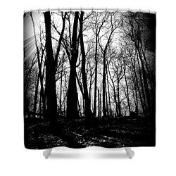 Backdunes In April Shower Curtain by Michelle Calkins