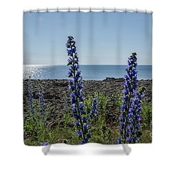 Shower Curtain featuring the photograph Backlit Blue Flowers  by Kennerth and Birgitta Kullman