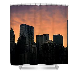 Backlit Shower Curtain by Joann Vitali